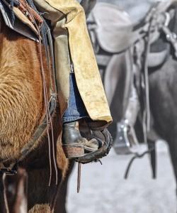 Cowboy auf Pferd mit Chaps